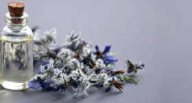 Vivre sa ménopause avec la naturopathie, image d'une boite d'huiles essentielles et roses