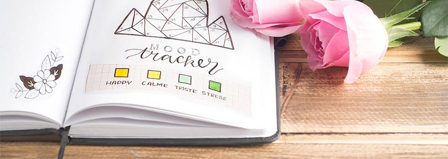 Mon petit carnet qui sait tout de moi - Image d'un journal intime ouvert