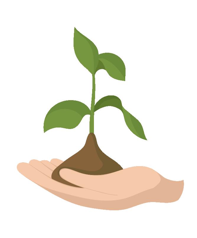 Zéro Déchet - On composte - Illustration d'une plante qui pousse