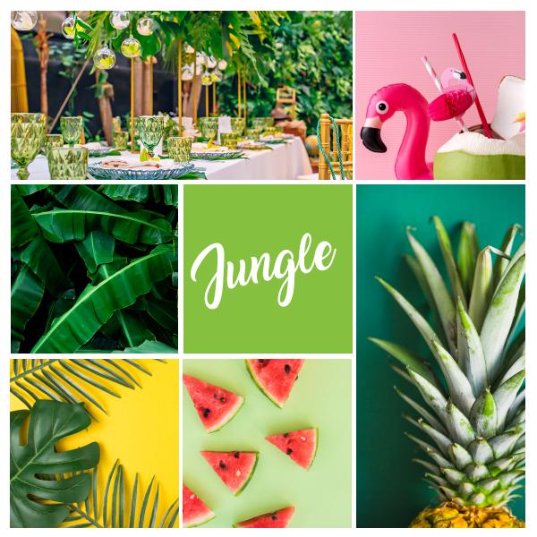 Thème anniversaire Jungle pour fêter 50 ans