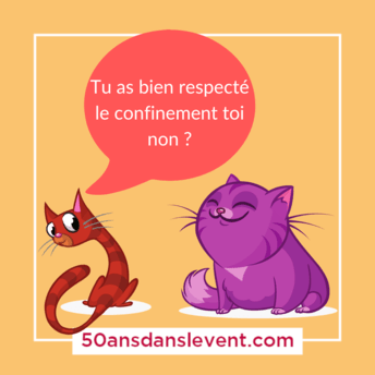 Tu as bien respecter le confinement toi non