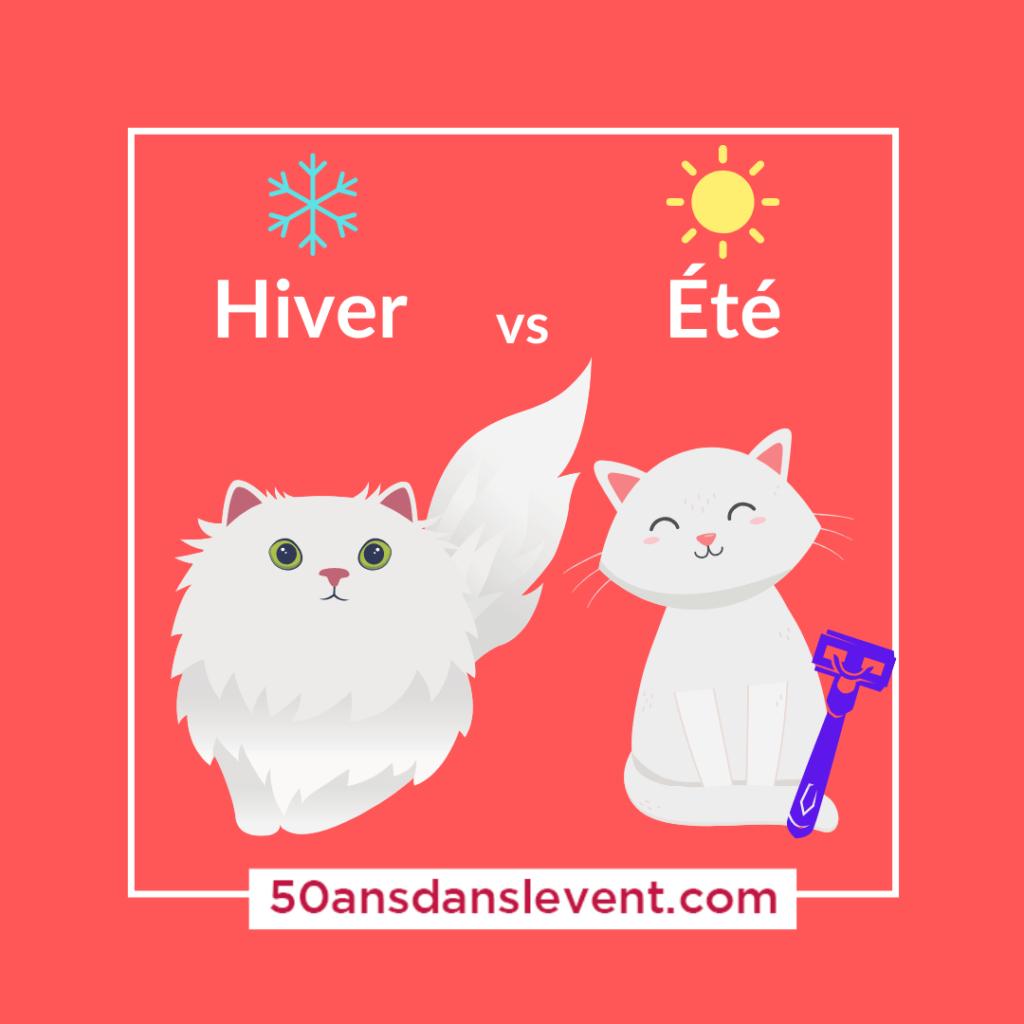hiver vs ete
