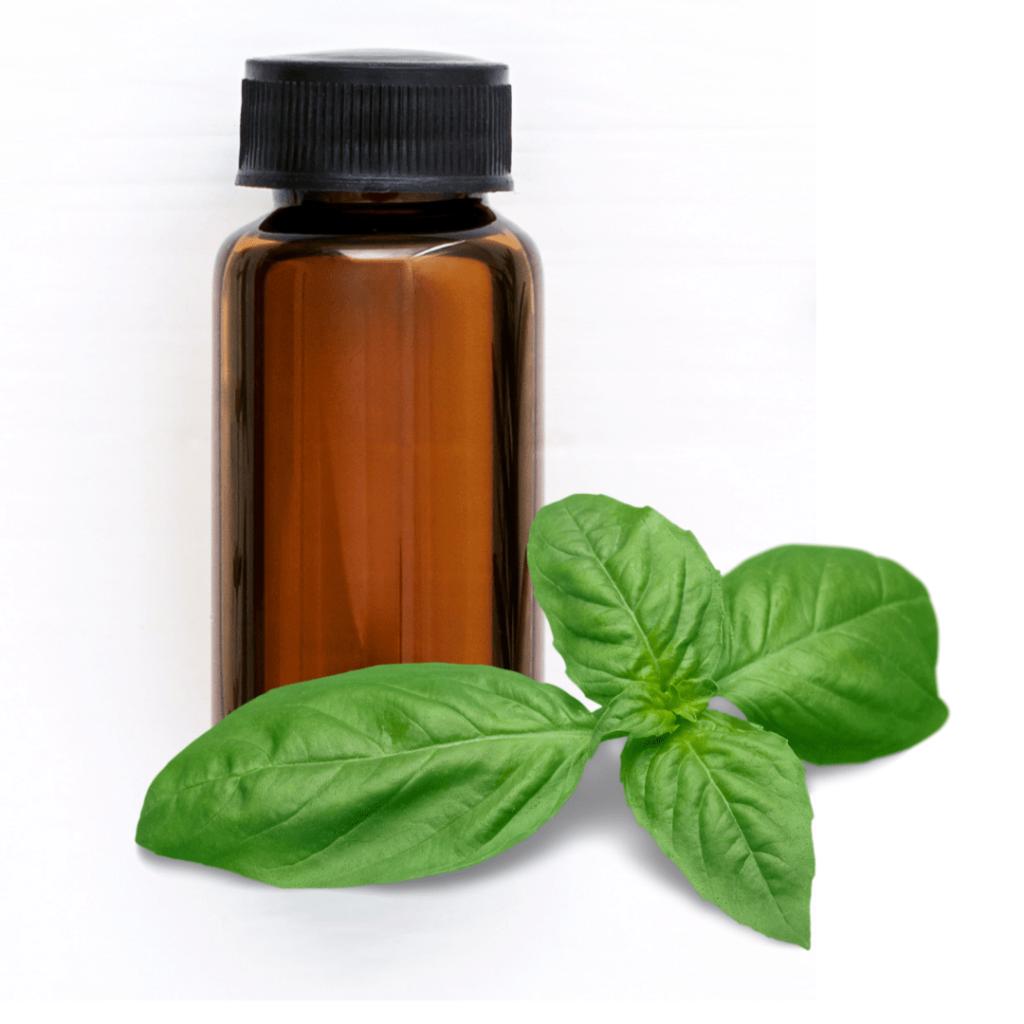 huiles essentielles anti-stress basilic