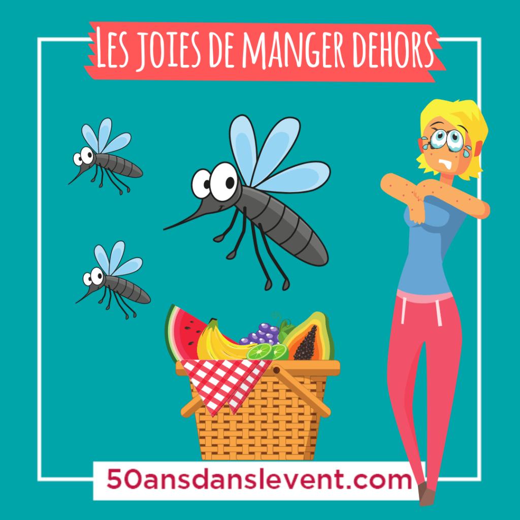 les joies de manger dehors les moustiques