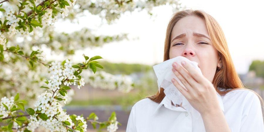 allergies printanières